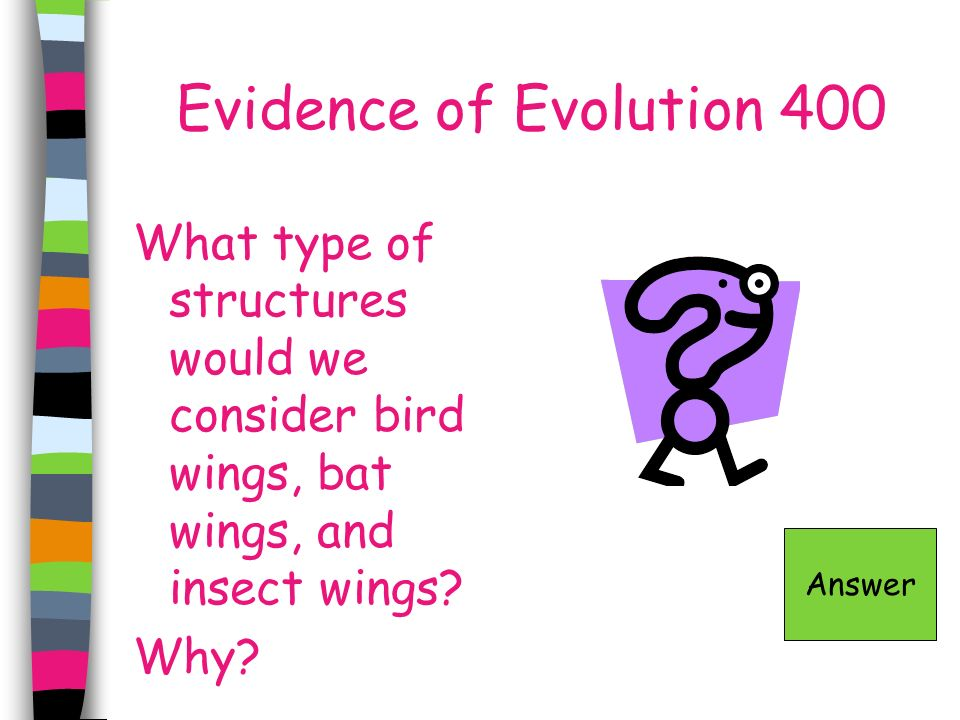 Evidence of Evolution 400 What type of structures would we consider bird wings, bat wings, and insect wings? Why? Answer