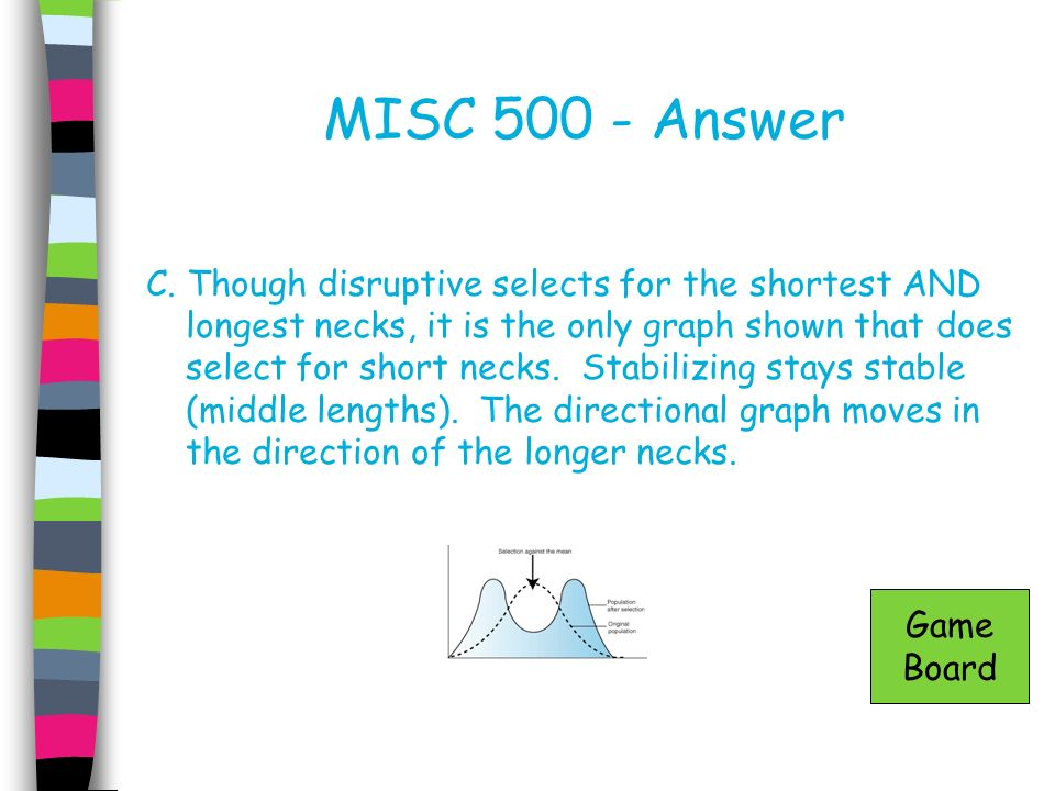 MISC 500 - Answer C. Though disruptive selects for the shortest AND longest necks, it is the only graph shown that does select for short necks. Stabil