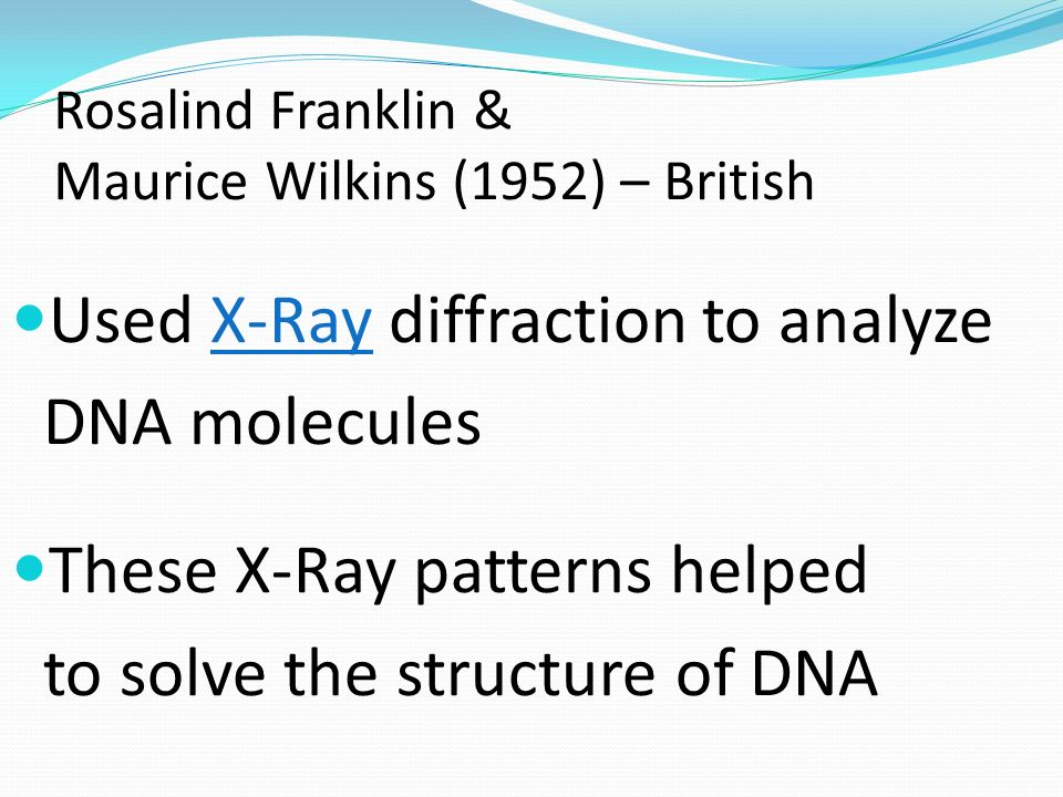 Rosalind Franklin & Maurice Wilkins (1952) – British Used X-Ray diffraction to analyze DNA molecules These X-Ray patterns helped to solve the structur