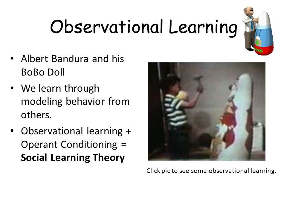 Observational Learning Albert Bandura and his BoBo Doll We learn through modeling behavior from others. Observational learning + Operant Conditioning