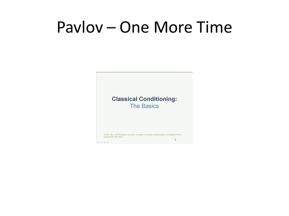 Pavlov – One More Time