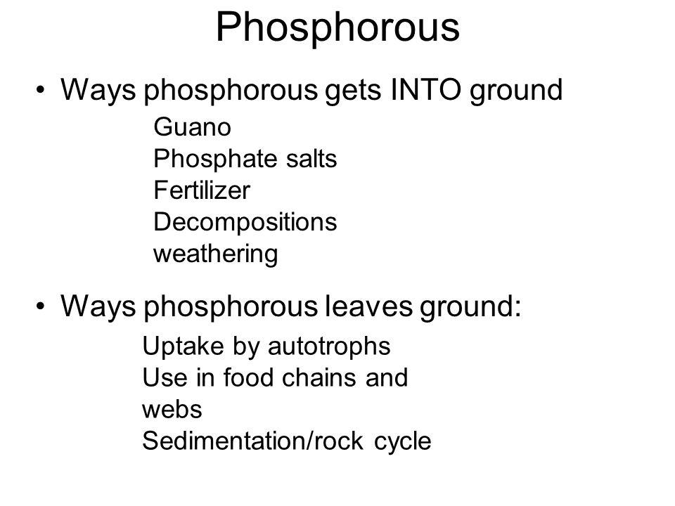 Phosphorous Ways phosphorous gets INTO ground Ways phosphorous leaves ground: Guano Phosphate salts Fertilizer Decompositions weathering Uptake by aut