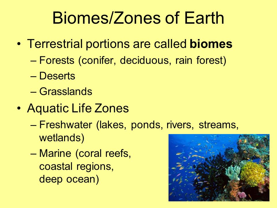 Biomes/Zones of Earth Terrestrial portions are called biomes –Forests (conifer, deciduous, rain forest) –Deserts –Grasslands Aquatic Life Zones –Fresh