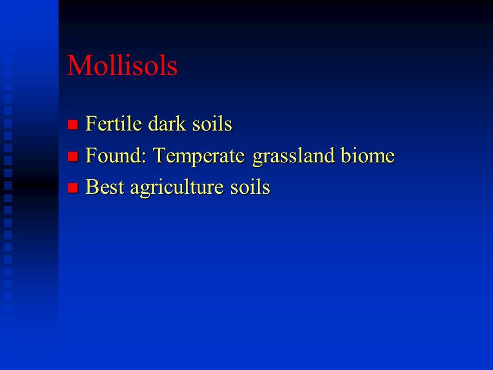 Mollisols n Fertile dark soils n Found: Temperate grassland biome n Best agriculture soils