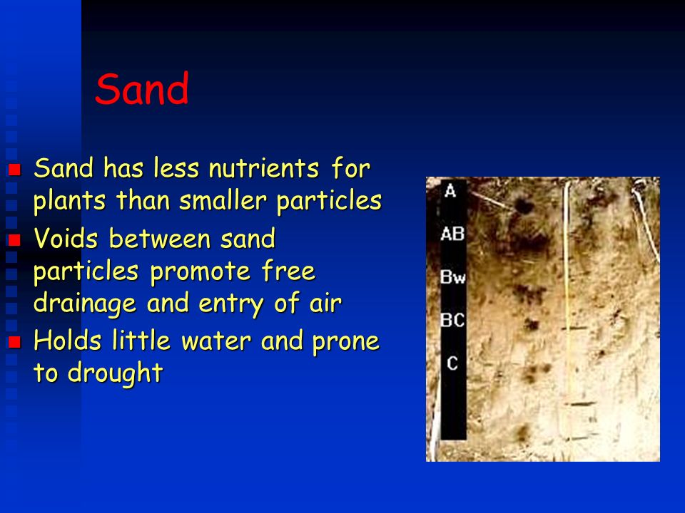 Sand n Sand has less nutrients for plants than smaller particles n Voids between sand particles promote free drainage and entry of air n Holds little