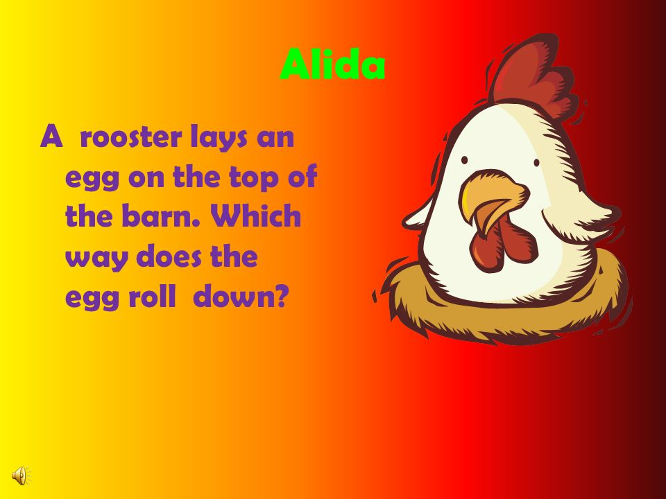 Alida A rooster lays an egg on the top of the barn. Which way does the egg roll down?