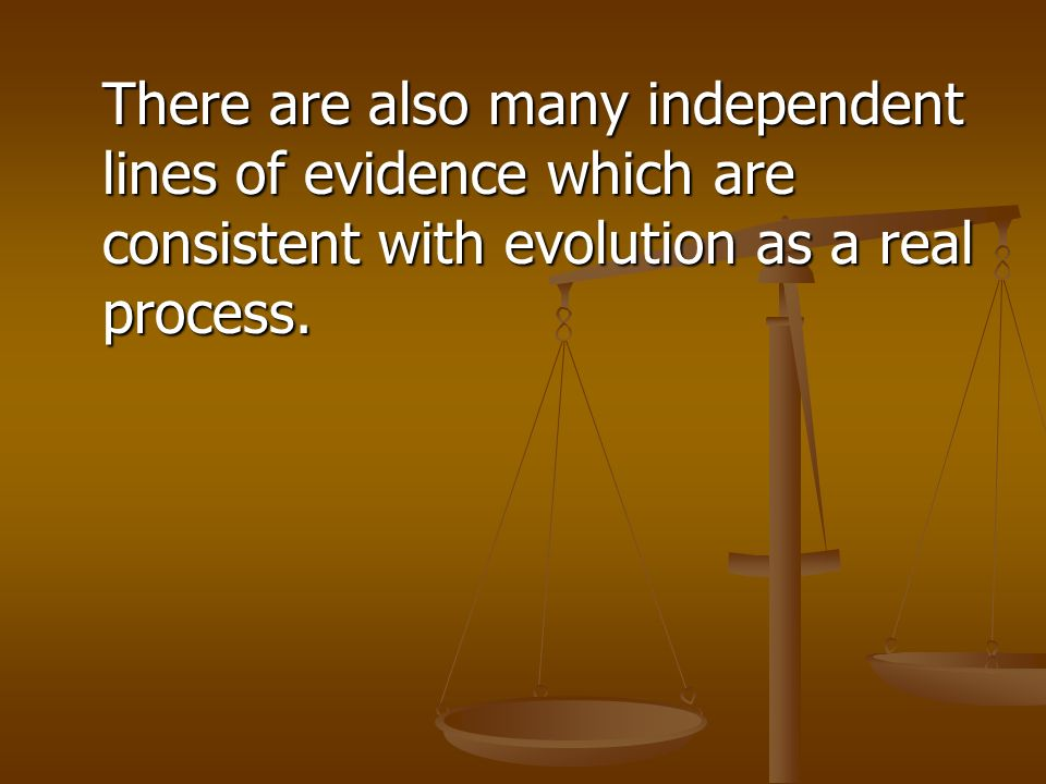There are also many independent lines of evidence which are consistent with evolution as a real process.