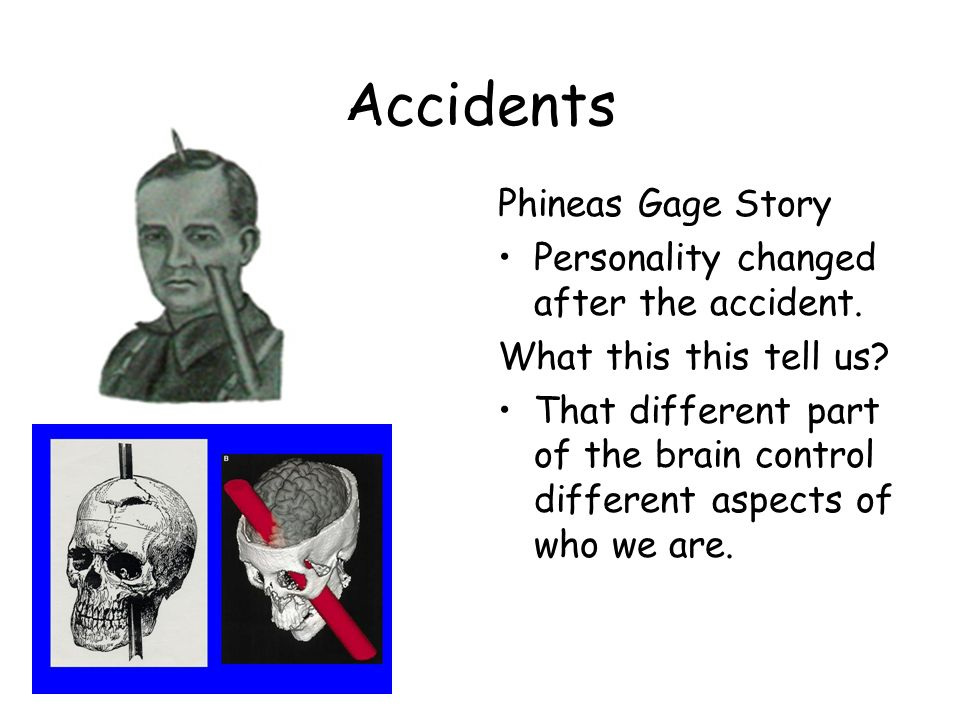 Accidents Phineas Gage Story Personality changed after the accident. What this this tell us? That different part of the brain control different aspect