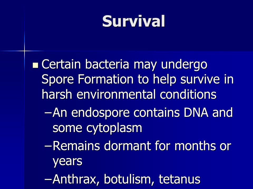 Survival Certain bacteria may undergo Spore Formation to help survive in harsh environmental conditions Certain bacteria may undergo Spore Formation to help survive in harsh environmental conditions –An endospore contains DNA and some cytoplasm –Remains dormant for months or years –Anthrax, botulism, tetanus