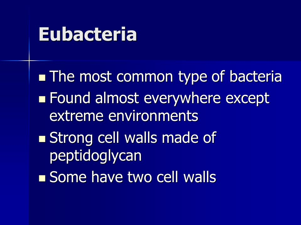 Eubacteria The most common type of bacteria The most common type of bacteria Found almost everywhere except extreme environments Found almost everywhere except extreme environments Strong cell walls made of peptidoglycan Strong cell walls made of peptidoglycan Some have two cell walls Some have two cell walls