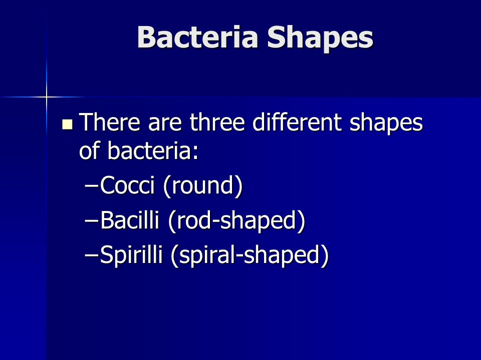 Bacteria Shapes There are three different shapes of bacteria: There are three different shapes of bacteria: –Cocci (round) –Bacilli (rod-shaped) –Spirilli (spiral-shaped)