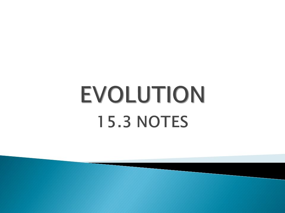 15.3 NOTES