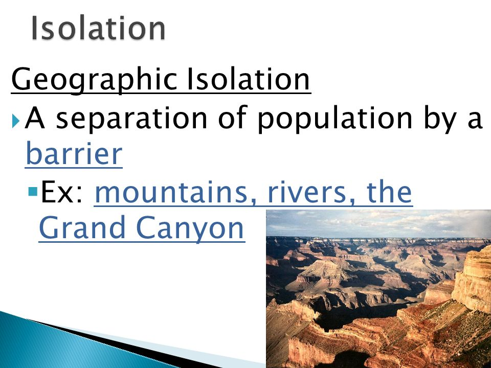 Geographic Isolation A separation of population by a barrier Ex: mountains, rivers, the Grand Canyon