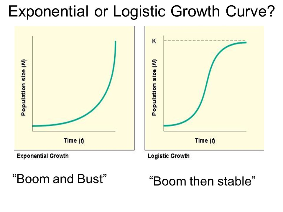 Exponential or Logistic Growth Curve? Boom and Bust Boom then stable