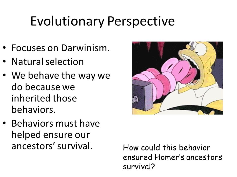Evolutionary Perspective Focuses on Darwinism. Natural selection We behave the way we do because we inherited those behaviors. Behaviors must have hel