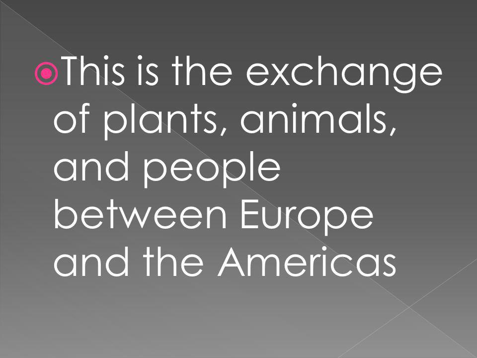This is the exchange of plants, animals, and people between Europe and the Americas
