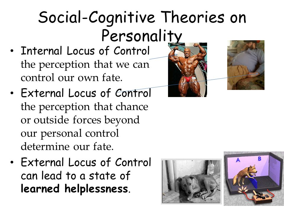 Social-Cognitive Theories on Personality Internal Locus of Control the perception that we can control our own fate. External Locus of Control the perc