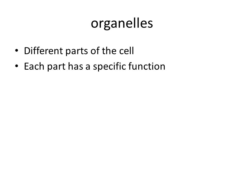 organelles Different parts of the cell Each part has a specific function