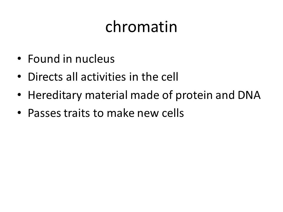 chromatin Found in nucleus Directs all activities in the cell Hereditary material made of protein and DNA Passes traits to make new cells