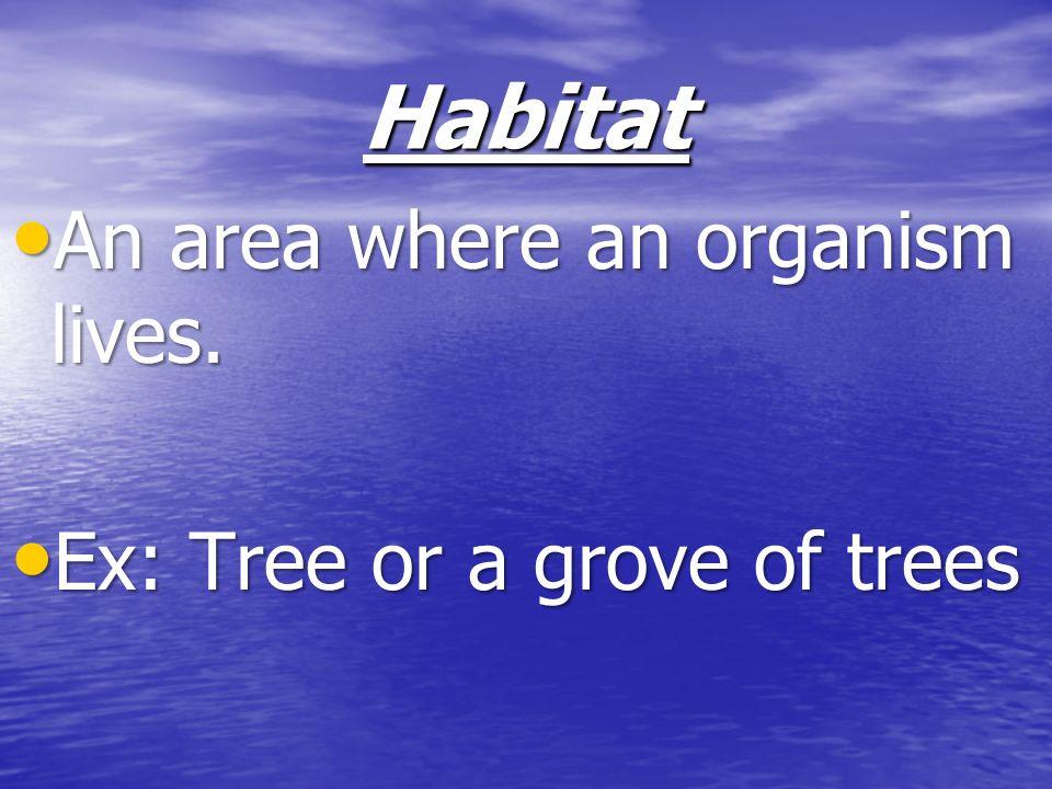 Habitat An area where an organism lives. An area where an organism lives. Ex: Tree or a grove of trees Ex: Tree or a grove of trees