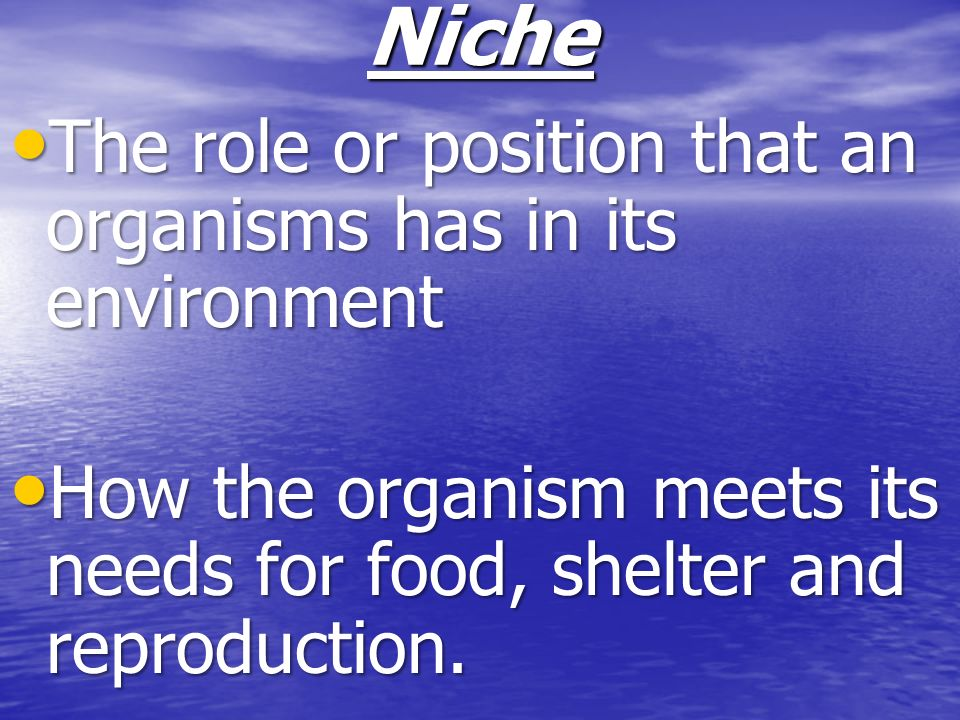 Niche The role or position that an organisms has in its environment The role or position that an organisms has in its environment How the organism mee