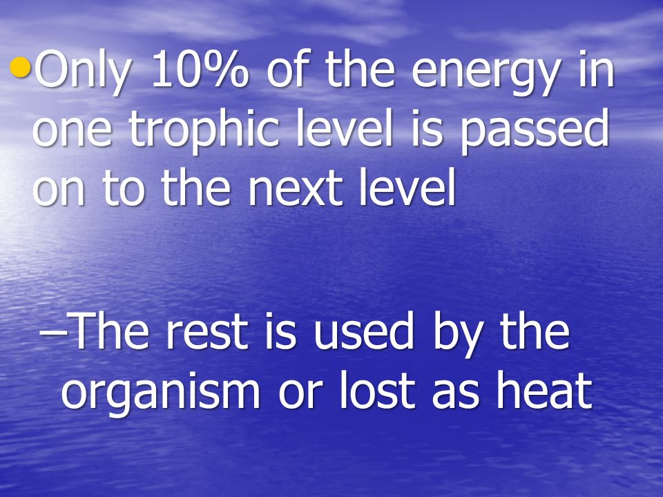 Only 10% of the energy in one trophic level is passed on to the next level Only 10% of the energy in one trophic level is passed on to the next level