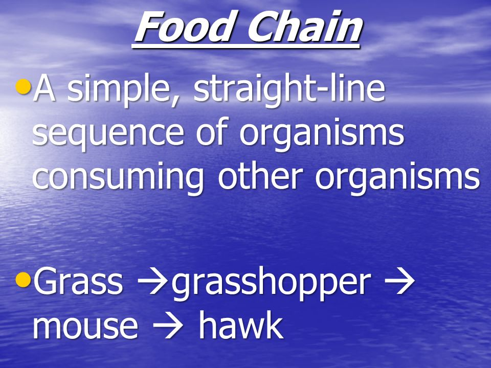 Food Chain A simple, straight-line sequence of organisms consuming other organisms A simple, straight-line sequence of organisms consuming other organ