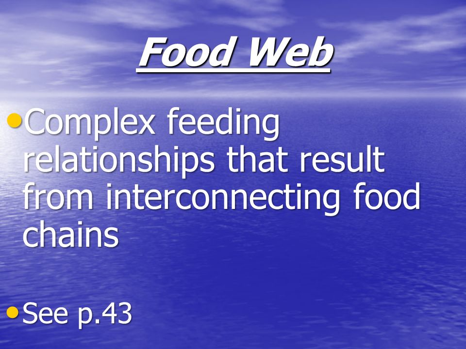 Food Web Complex feeding relationships that result from interconnecting food chains Complex feeding relationships that result from interconnecting foo