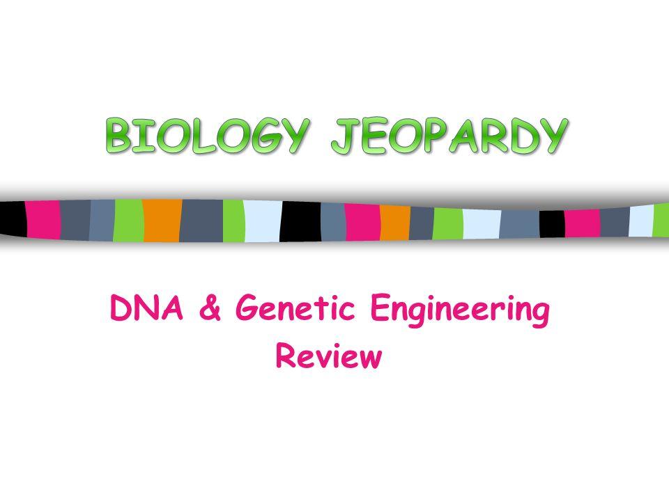 DNA & Genetic Engineering Review