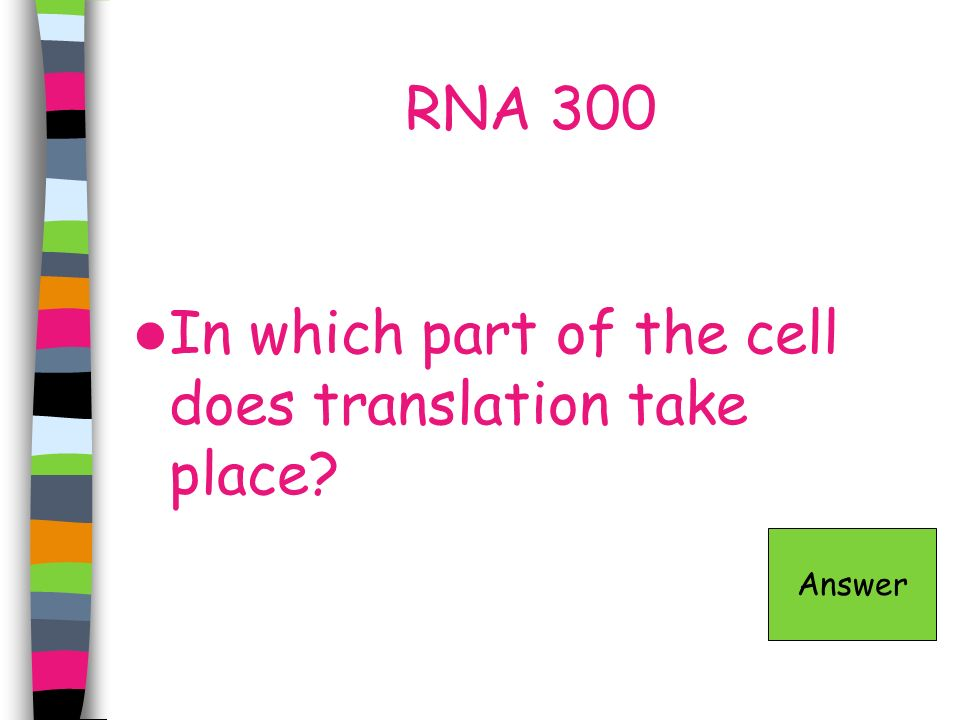 RNA 300 In which part of the cell does translation take place? Answer