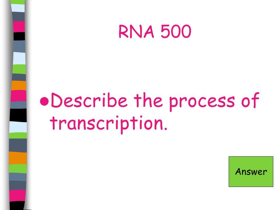 RNA 500 Describe the process of transcription. Answer