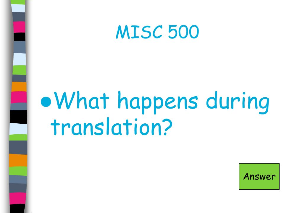 MISC 500 What happens during translation? Answer