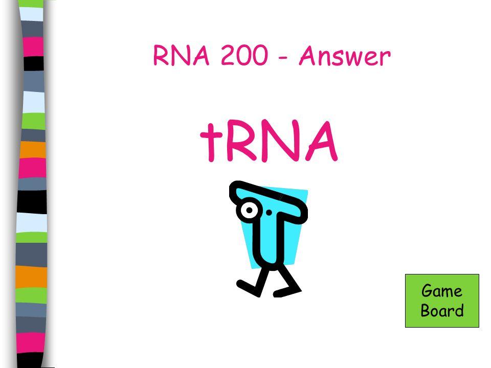RNA 300 - Answer At the ribosomes Game Board