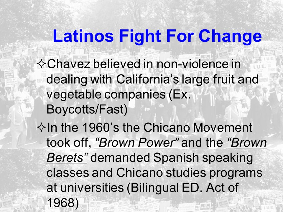 Latinos Fight For Change Chavez believed in non-violence in dealing with Californias large fruit and vegetable companies (Ex. Boycotts/Fast) In the 19