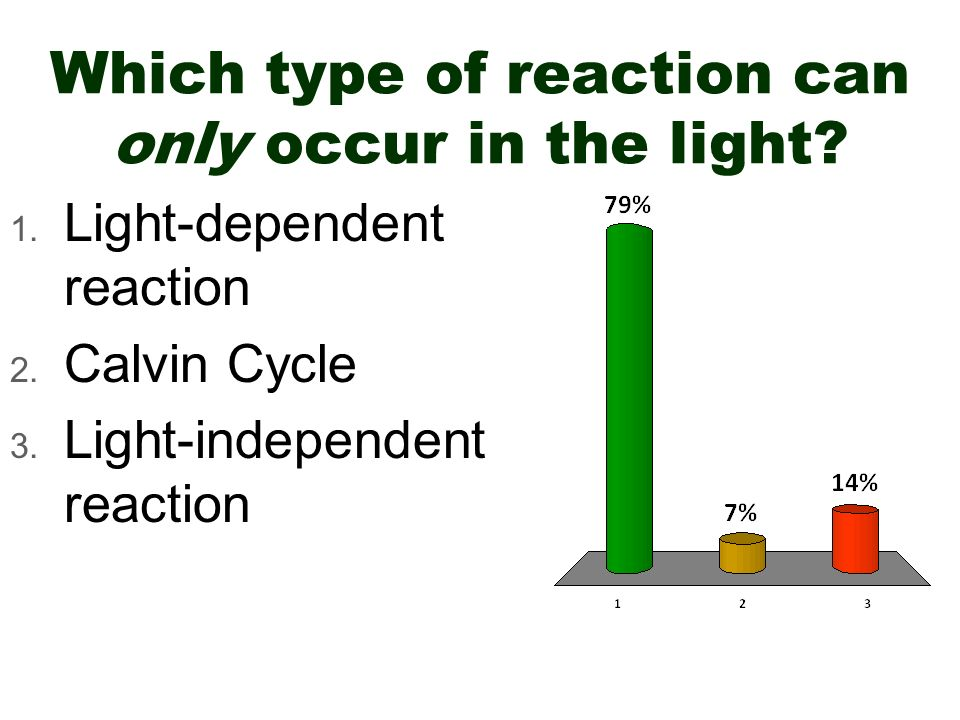 Which type of reaction can only occur in the light? 1. Light-dependent reaction 2. Calvin Cycle 3. Light-independent reaction