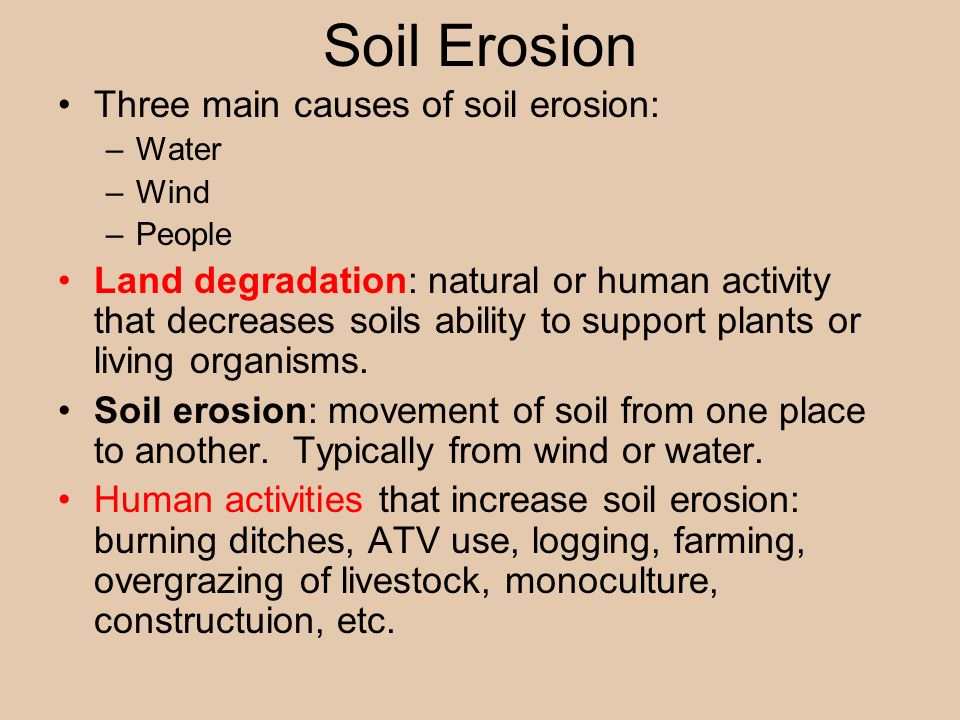 overgrazing major causes of soil erosion essay Overgrazing accelerating soil erosion in northern mexico this overgrazing therefore causes the grassland ecosystem to overgrazing accelerating soil erosion.