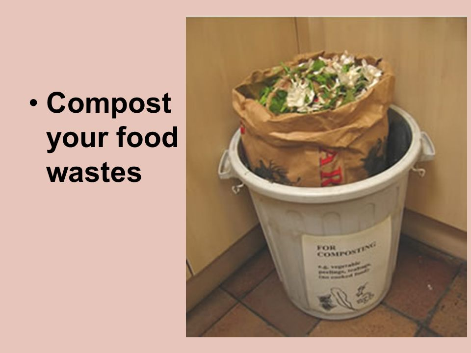 Compost your food wastes