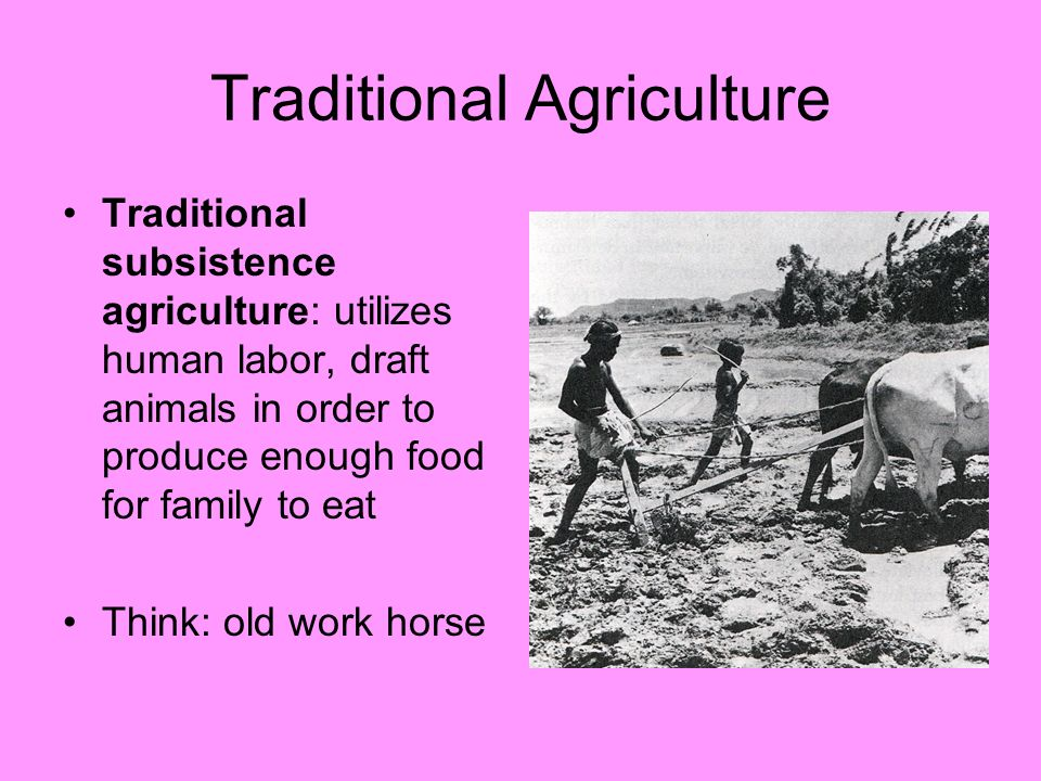 Traditional Agriculture Traditional subsistence agriculture: utilizes human labor, draft animals in order to produce enough food for family to eat Thi