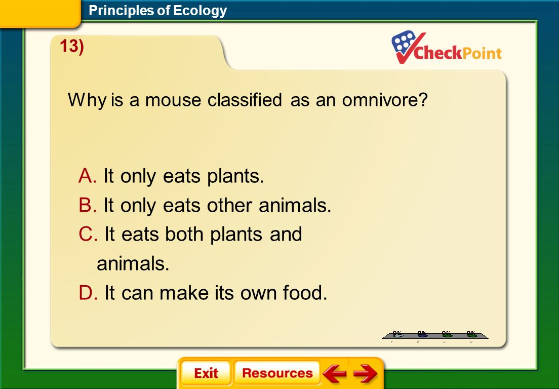 1.A 2.B 3.C 4.D STP 4 Principles of Ecology 13) Why is a mouse classified as an omnivore? A. It only eats plants. B. It only eats other animals. C. It