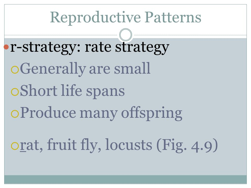 Reproductive Patterns r-strategy: rate strategy Generally are small Short life spans Produce many offspring rat, fruit fly, locusts (Fig. 4.9)