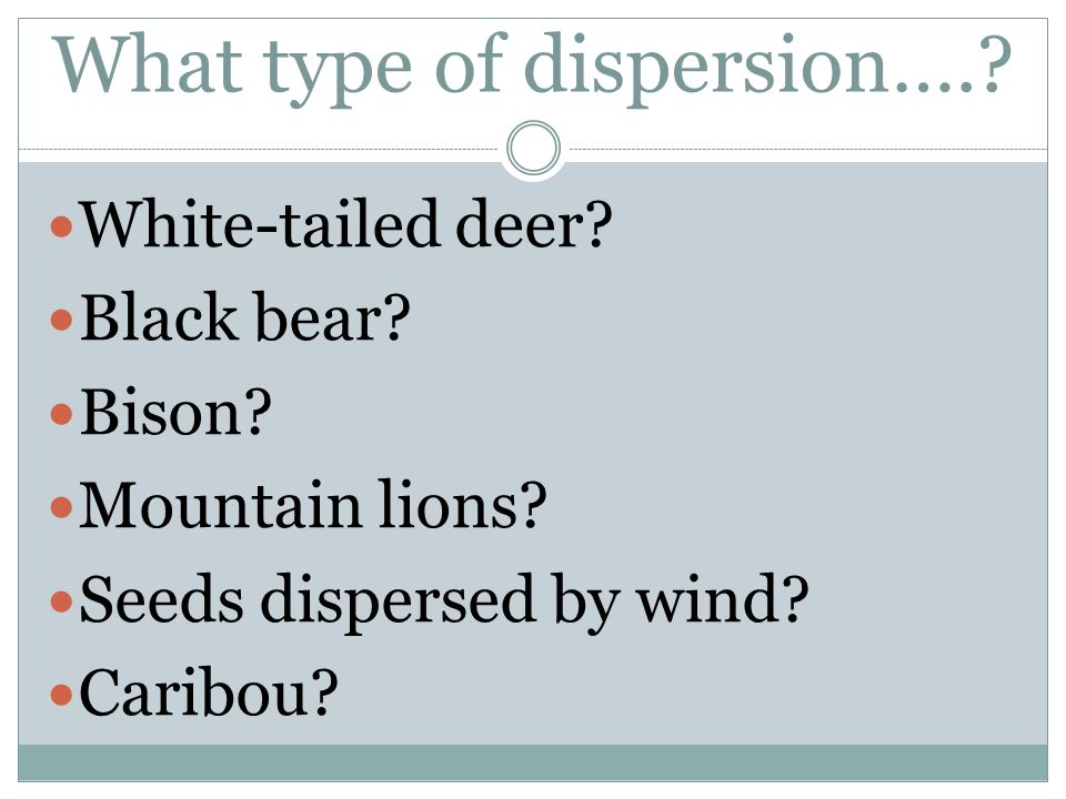 What type of dispersion….? White-tailed deer? Black bear? Bison? Mountain lions? Seeds dispersed by wind? Caribou?