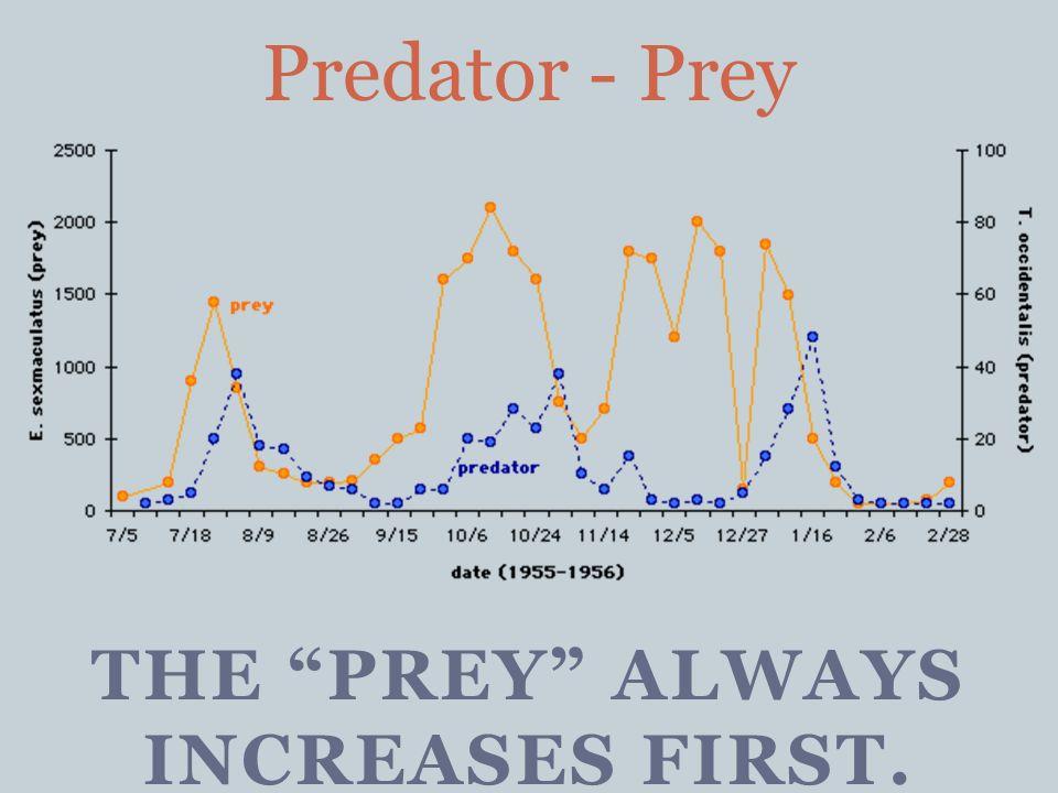 THE PREY ALWAYS INCREASES FIRST. Predator - Prey