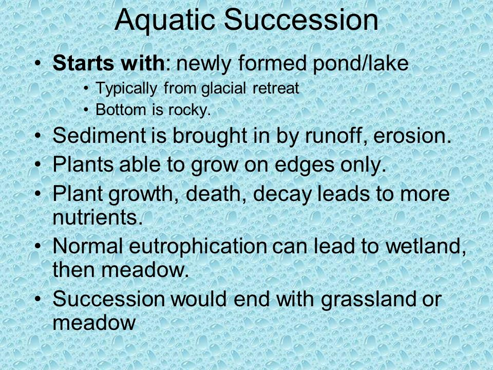 Aquatic Succession Starts with: newly formed pond/lake Typically from glacial retreat Bottom is rocky. Sediment is brought in by runoff, erosion. Plan