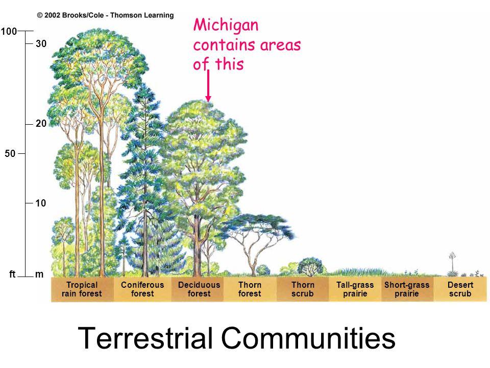 mft 10 50 20 30 100 Tropical rain forest Coniferous forest Deciduous forest Thorn forest Tall-grass prairie Short-grass prairie Desert scrub Thorn scr