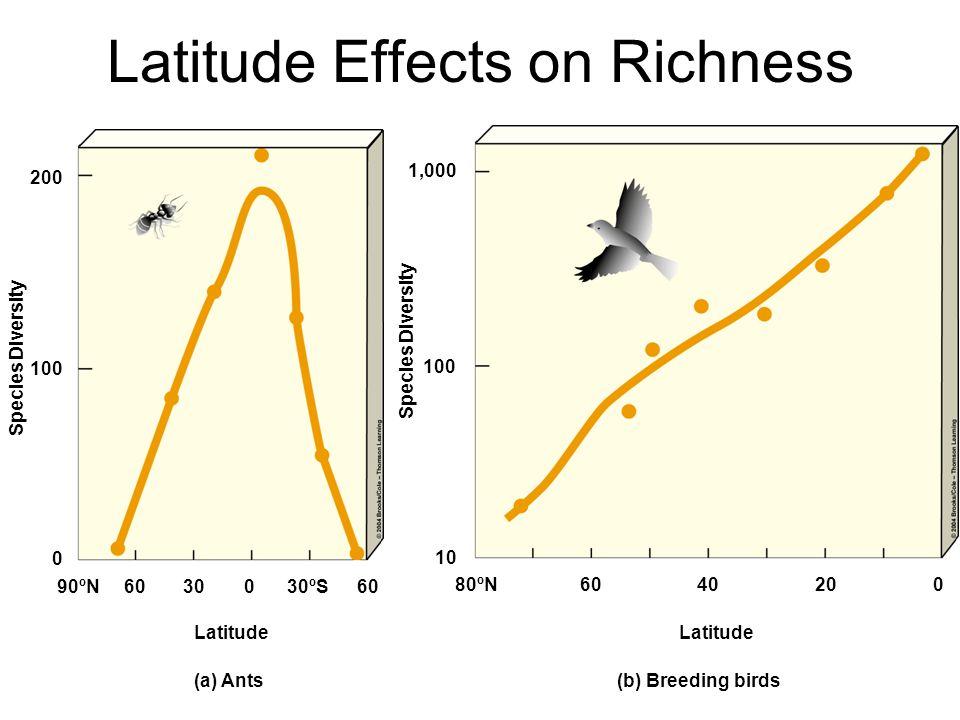 Latitude Effects on Richness Species Diversity 1,000 100 10 Latitude 80ºN6040200 200 100 0 90ºN6030030ºS60 Latitude (a) Ants(b) Breeding birds