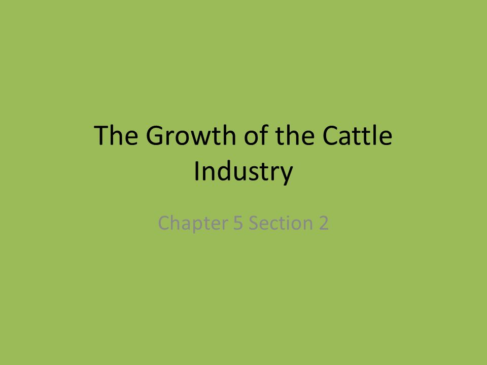 The Growth of the Cattle Industry Chapter 5 Section 2