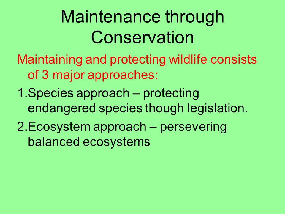 Maintenance through Conservation Maintaining and protecting wildlife consists of 3 major approaches: 1.Species approach – protecting endangered specie