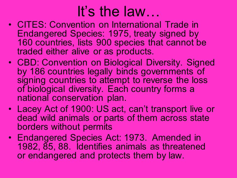 Its the law… CITES: Convention on International Trade in Endangered Species: 1975, treaty signed by 160 countries, lists 900 species that cannot be tr