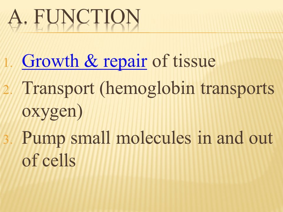 1. Growth & repair of tissue 2. Transport (hemoglobin transports oxygen) 3.