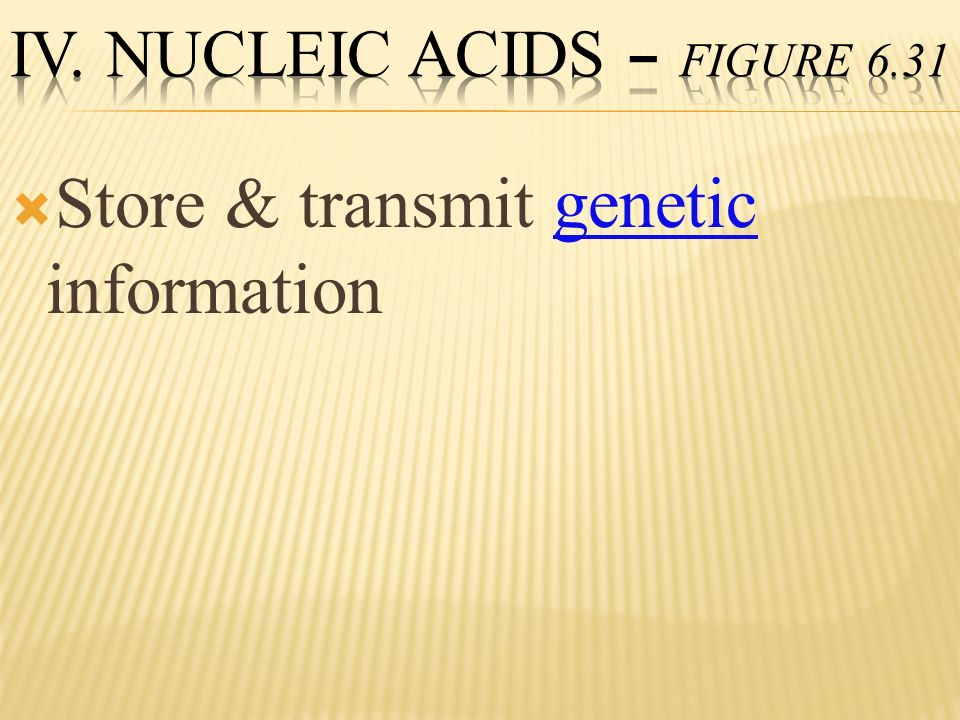 Store & transmit genetic information